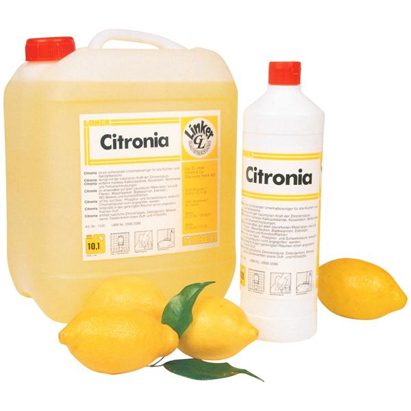 Citronia Sanitär-Unterhaltsreiniger