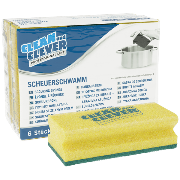 CLEAN and CLEVER PROFESSIONAL Scheuerschwamm PRO 60