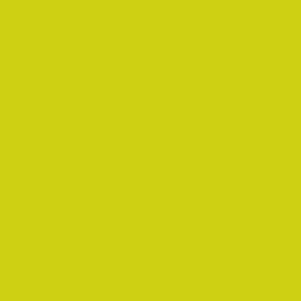 Vorschau: Duni Servietten 40 x 40 cm kiwi online kaufen - Verwendung 2