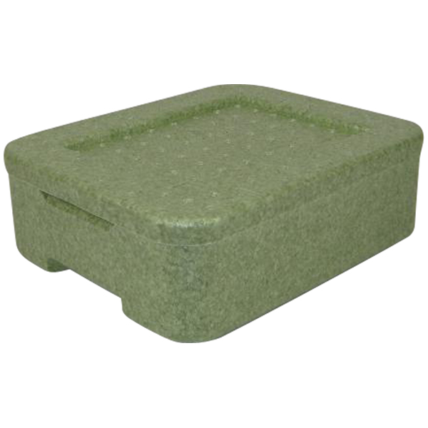 Thermobox Iso-Transportbehälter grün W1